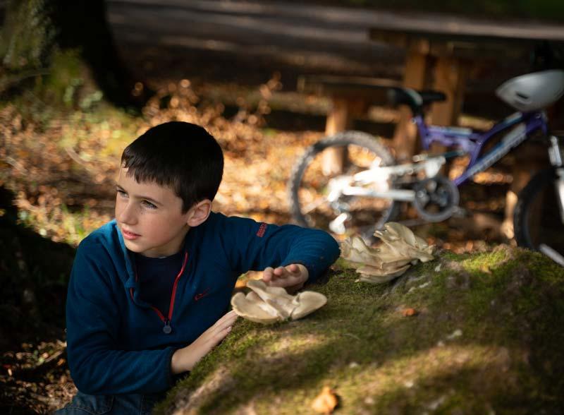 Bike Hire - Portumna Forest Park