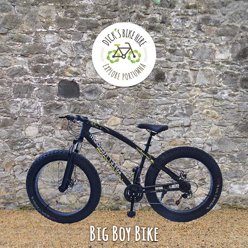 Big Boy Bicycle Rental - Dick's Bike Hire, Portumna, Galway