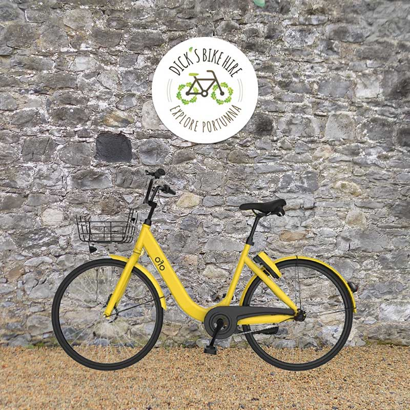 Group Bicycle Rental - Dick's Bike Hire, Portumna, Galway