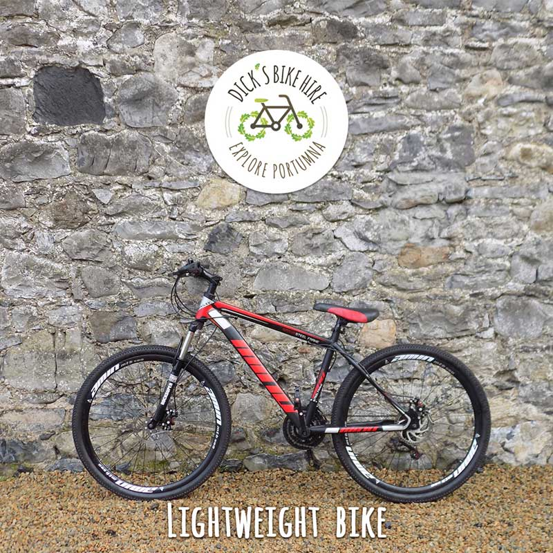 Lightweight Bicycle Rental - Dick's Bike Hire, Portumna, Galway